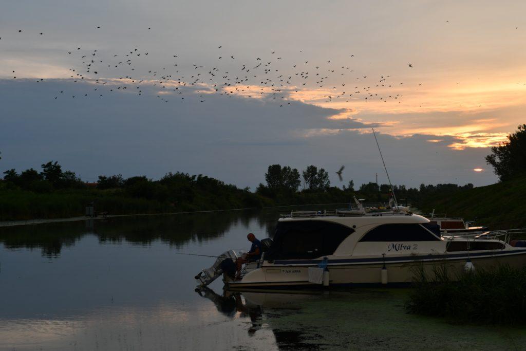 Мирне воде за пецање