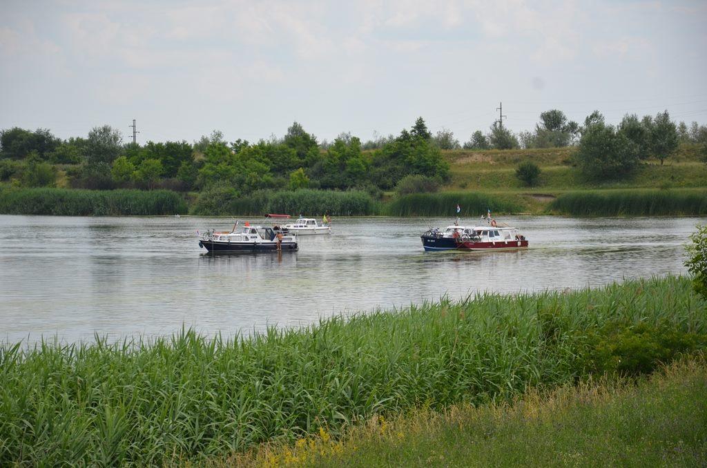 Упловљавање у Деспотово